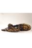 תמונה של נעליים אלון