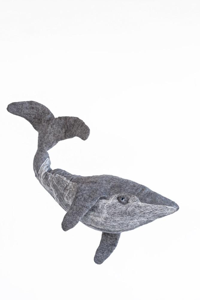 תמונה של לוויתן